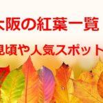 大阪の紅葉の名所2019!時期や見ごろは?ライトアップやハイキングで人気は?